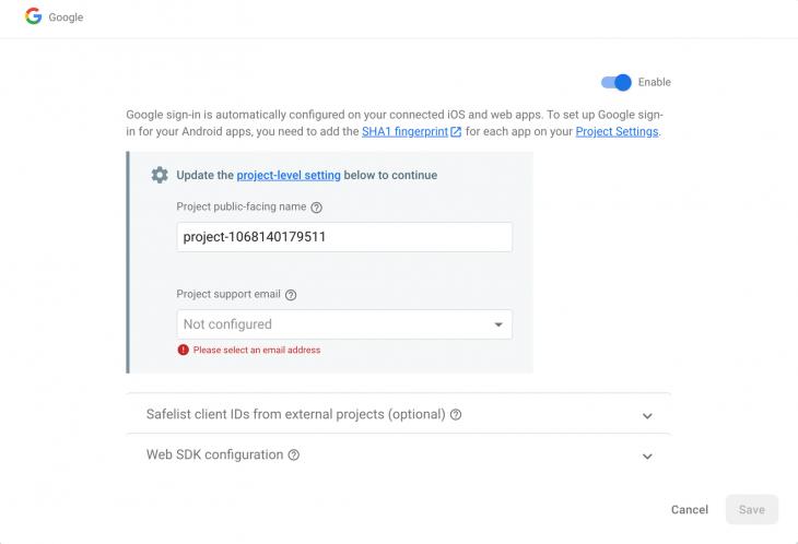 Google Options in Firebase