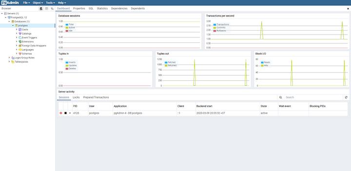 PostgreSQL Database Overview in pgAdmin