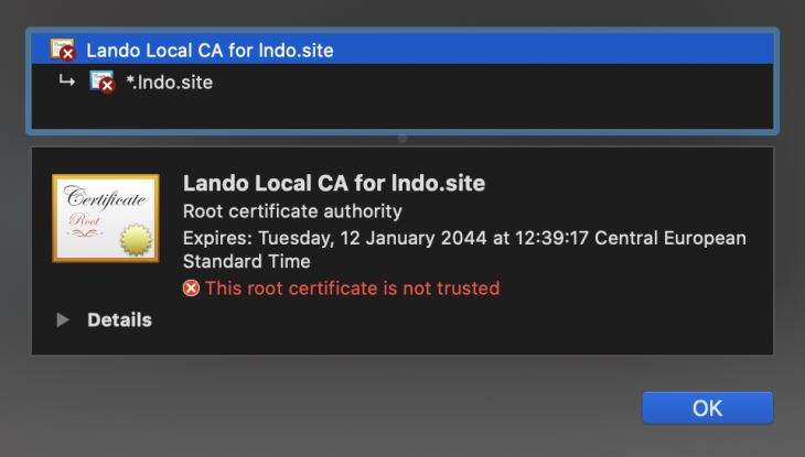 We can see that the certificate is created and HTTPS connection is established