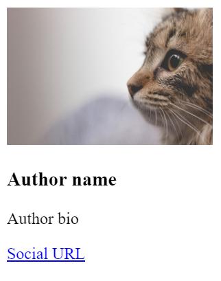 Author Box Elements With Image