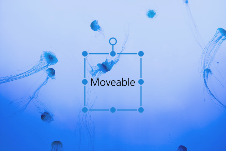 5 Things You Can Do With Moveable