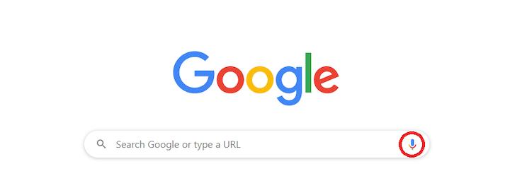 Google Mic Icon