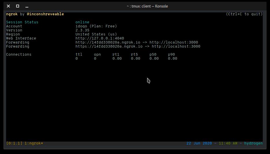 ngrok command output