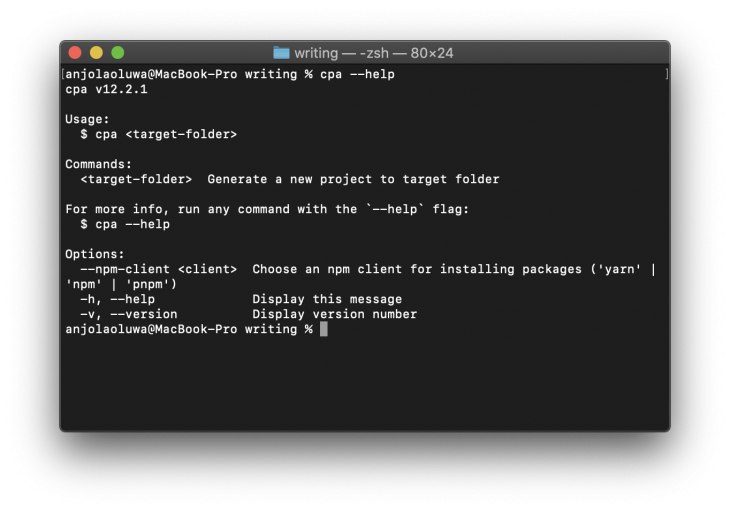 terminal window with commands, usage, and options description