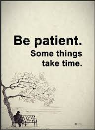 "image with words ""Be patient. Some things take time."""
