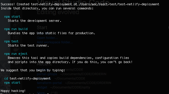 The commands we'll need to run to launch a Netlify test.