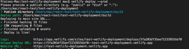 The code showing our deployment to Netlify was successful.