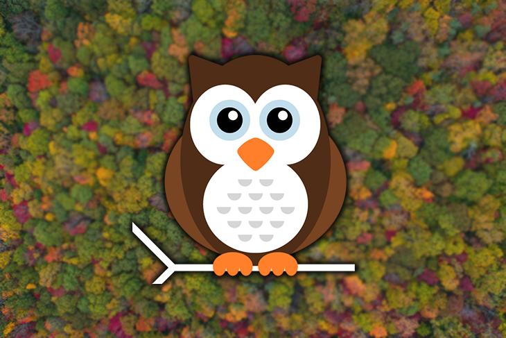 The Nightwatch Owl Logo