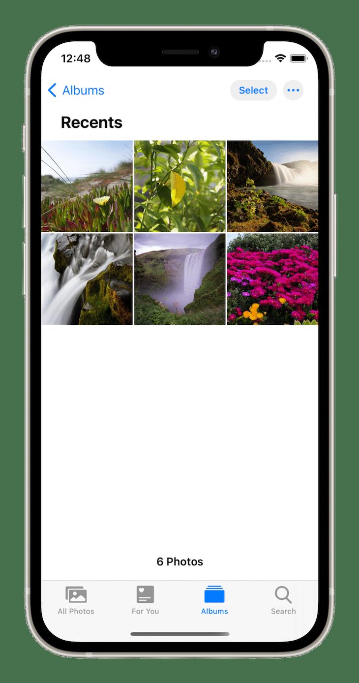 Grid Layout Apple Photos App