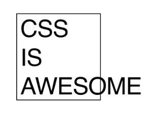 """""""CSS is awesome"""" with small box bordered around it"""