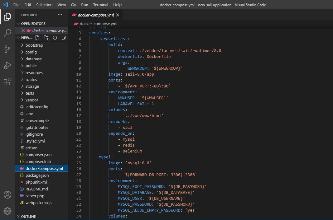 Screenshot of Docker programming environment