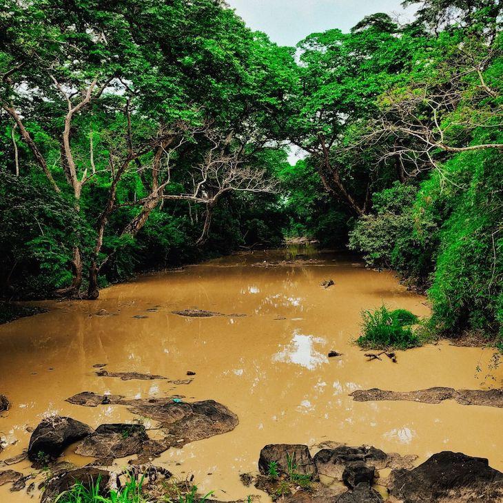 Osun Nehri NFT Sanat