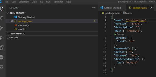 Screenshot of package.json installed correctly