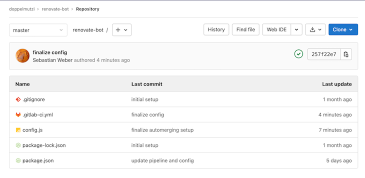Dashboard Of The Project Structure For The Renovate Bot