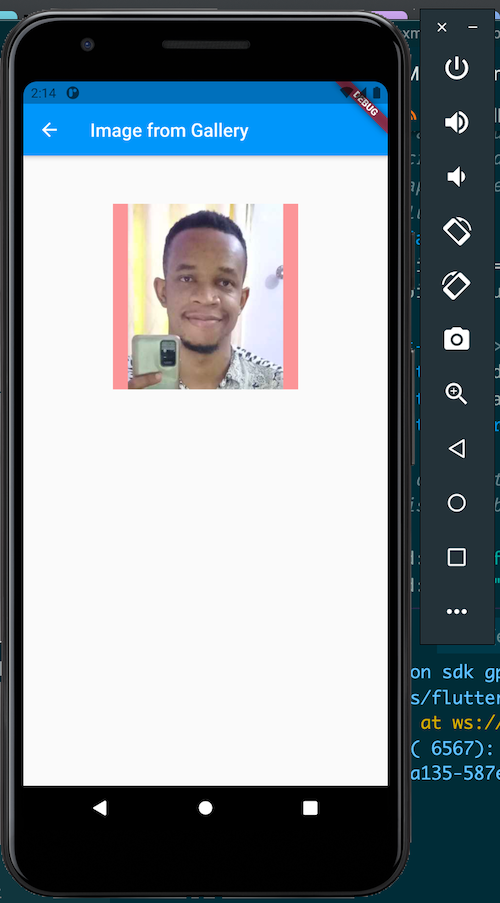 Flutter Image Picker From Gallery Example