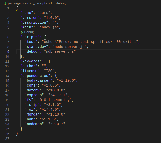 Package json File