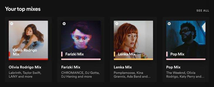 Spotify See All
