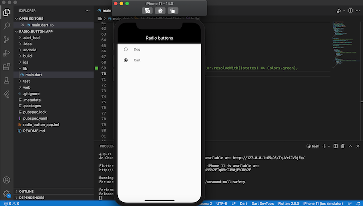 Flutter Radio Button Example